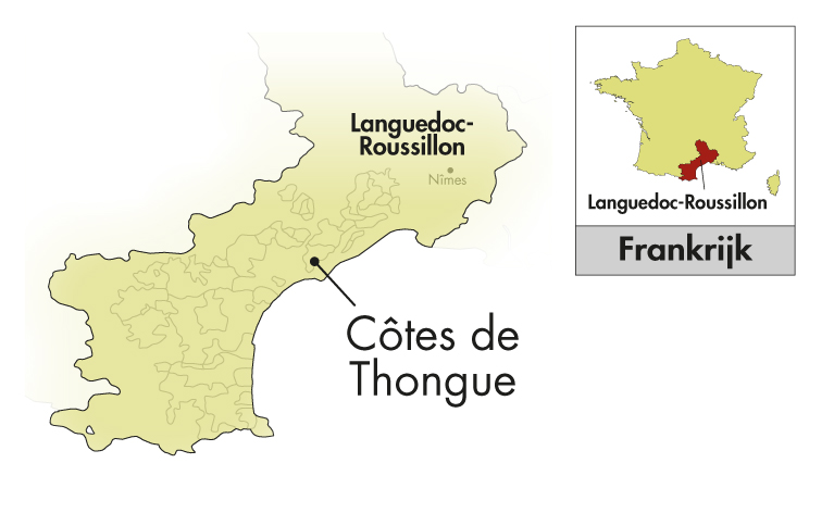 Domaine de l'Arjolle Côtes de Thongue Equilibre Muscat à Petits Grains