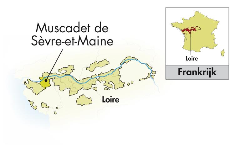 Domaine de la Grange Muscadet Sèvre et Maine sur lie