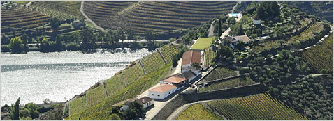 Landgoed Quinta do Crasto